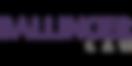 300x150-logo-ballinger.png