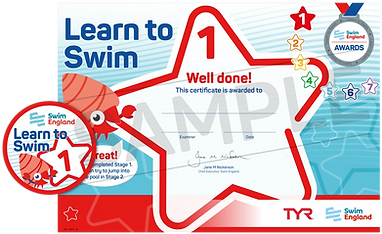 Learn to Swim Awards