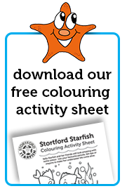 free colouring activity sheet