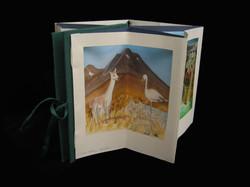Chilean Landscapes, Magdalena Cordero, page 1