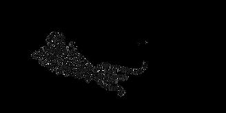 Casady Click Logo 2 black.png