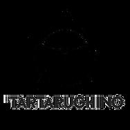 tartarughino black.png