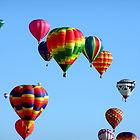 hot-air-balloons-439331_1920.jpg