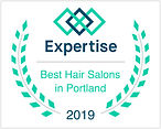 Expertise_best_salon_or_portland_hair-sa