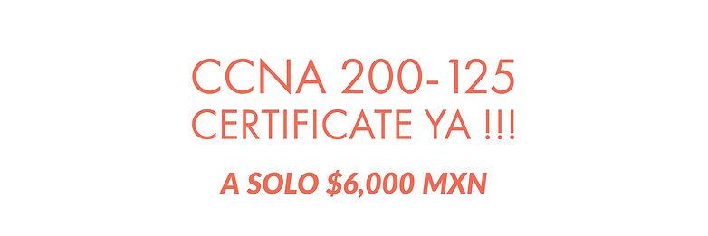 Curso CCNA Monterrey