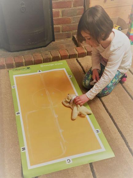 child dressage arena demi dressage test