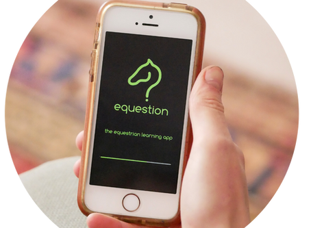 A modern way of learning with Equestion