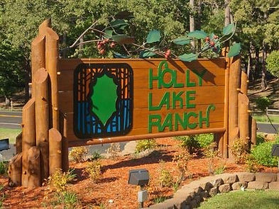 Sign in Holly Lake