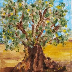 Ancient Oilve Tree, Puglia, Italy