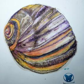 Snail Swirl