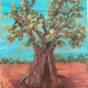 Ancinet Olive Tree 2
