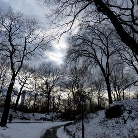 Central Park Winter, NY