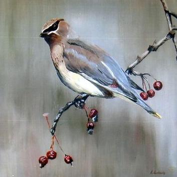 Oiseau sur branche de cerisier