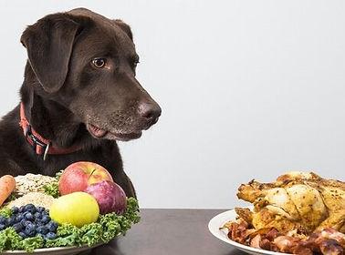 KIezen tussen gezond en vlees.jpg