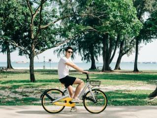 oBike skids to a halt inSingapore – Does the model work?