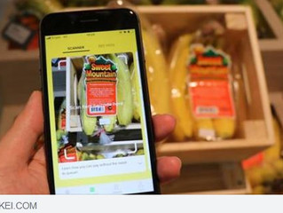 Singapore startup Honestbee helps offline stores face e-commerce onslaught