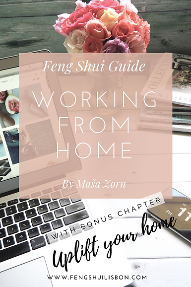 feng shui guide.png