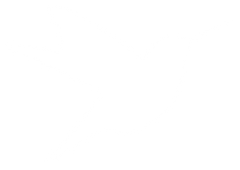 hummingbird_white40.png