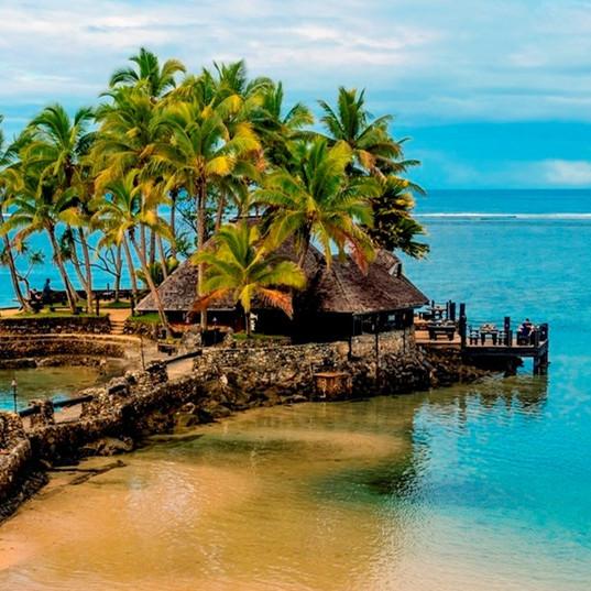 Fiji-India-Shoots