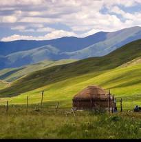 Kazakhstan-India-Shoots