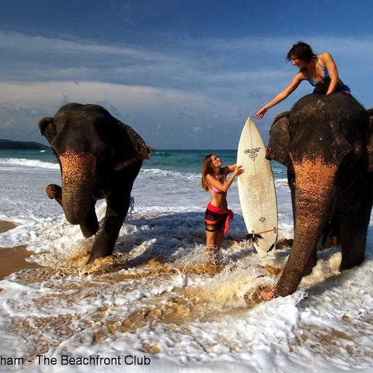 Thailand-India-Shoots