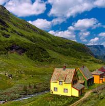Norway-India-Shoots