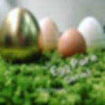 eggpore.jpg