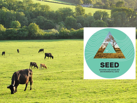 SEED Managed Service