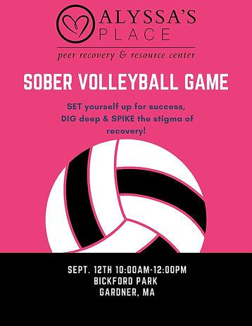 sober Volleyball game (3).jpg