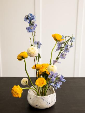 lexi_flowers_white_studio_aug_2021-40.jpg