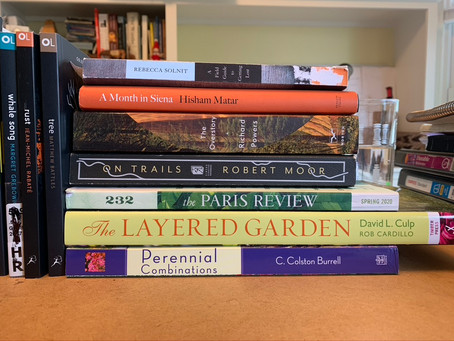Pandemic reading: the first few weeks