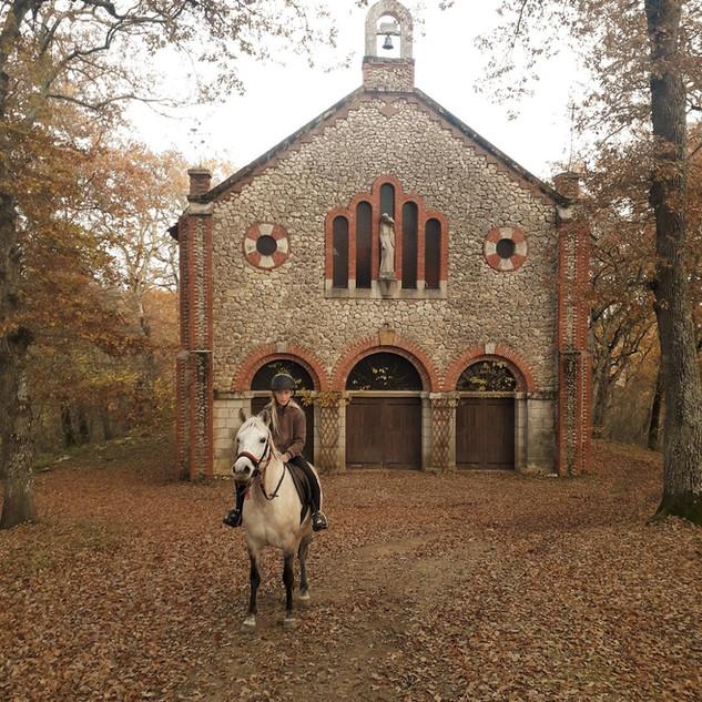 cheval devant chapelle de Montaut.jpg