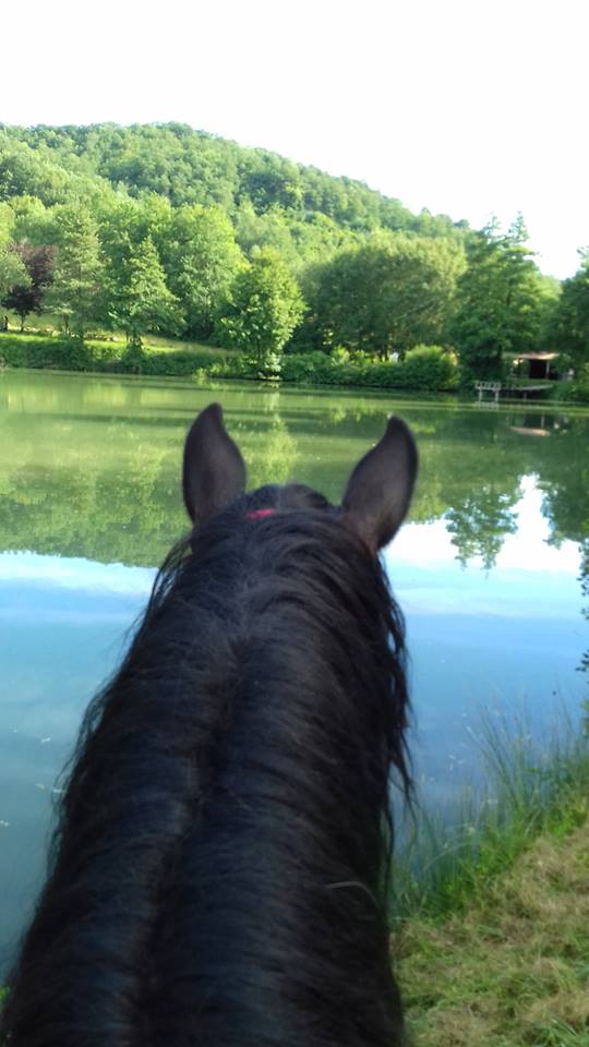 Promenade à cheval, lac de Montbrun