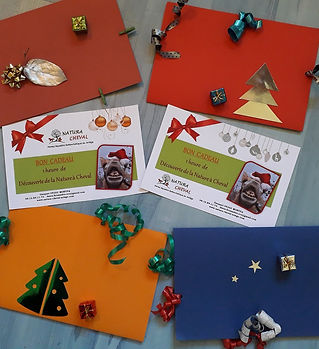 Cartes cadeau Noel.jpg