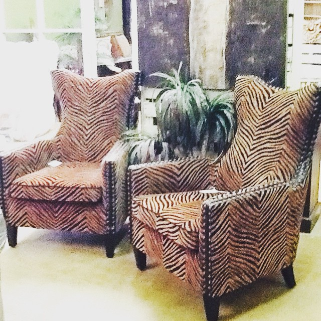 Luxurious printed chairs @mollywoodimports @hgtv