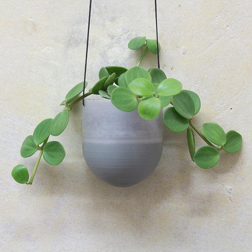 plantárium – Velký závěsný květník s pepřincem