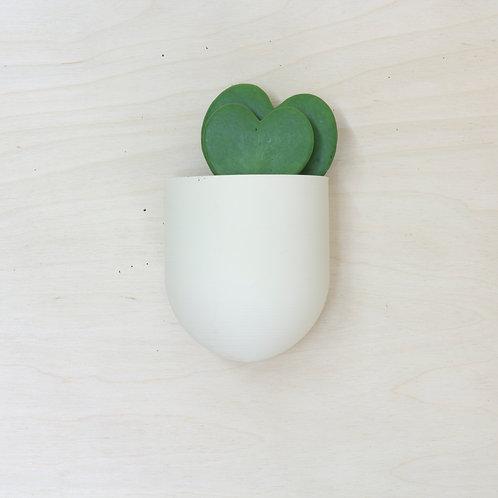 plantárium – Velký nástěnný květník