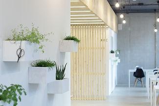 plantarium | Signature restaurant návrh interiéru