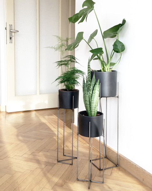 plantárium | Sada stojanů na rostliny