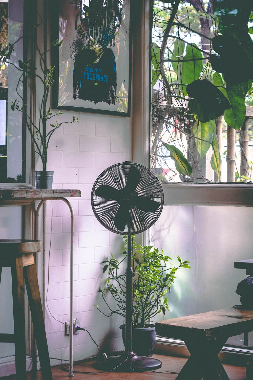 Fan in an indoor garden
