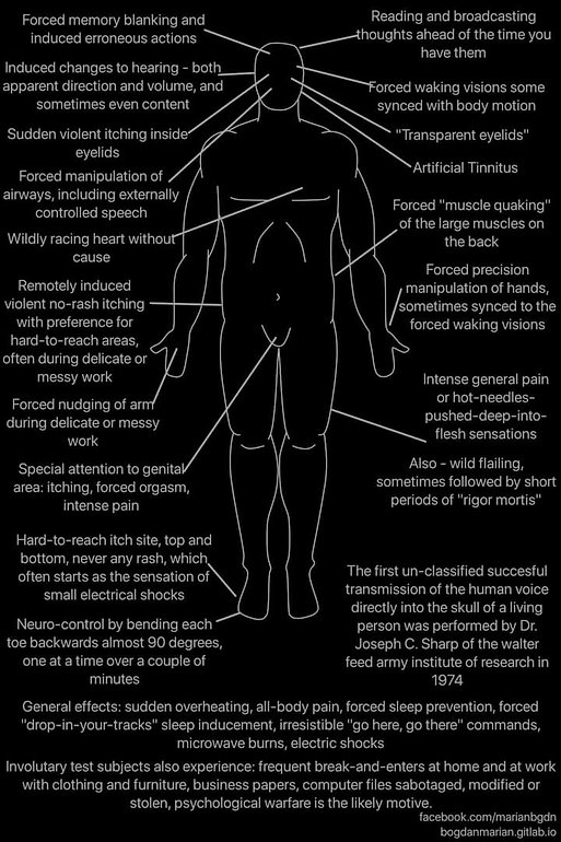 Body Chart and Graph.jpg