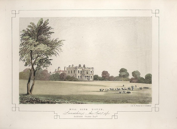 Plate 11: Hill Side House