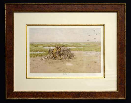Plate 03: Bay Snipe Shooting Pictures