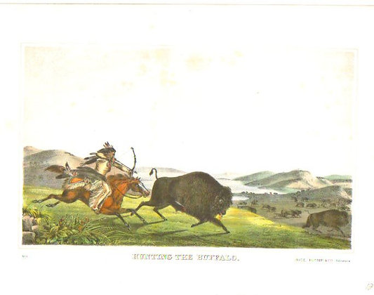 Plate 001: Hunting the Buffalo