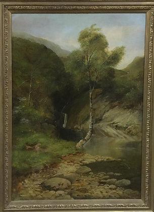 Birch Brook Angler