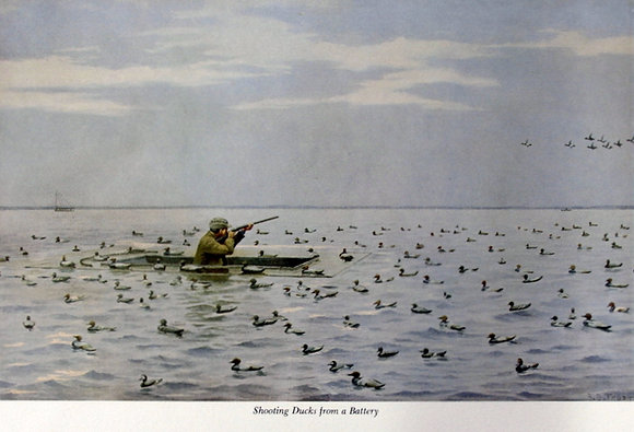 Plate 10: Shooting Ducks from A Battery Shooting