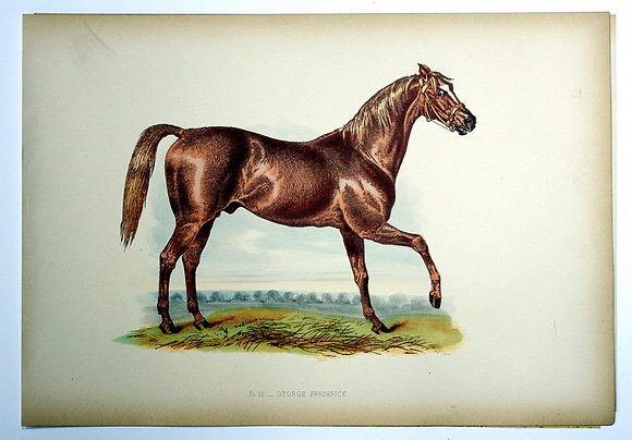 Plate 18: George Frederick