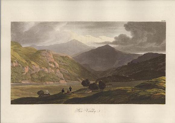 Plate 25: Ben Vracky