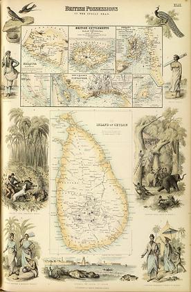 Principal Dutch Colonies in the Indian Seas