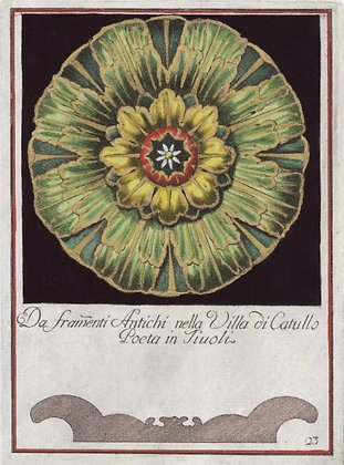 Plate 23 (Series A : Colored)